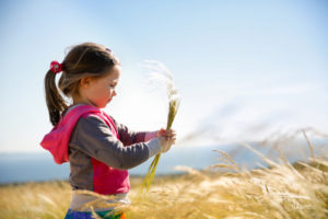 cute little girl picking and gathering brown grasses on a meadow with the wind blowing through her long hair and sea in the background. allergy, hay fever and hypersensitivity concept.
